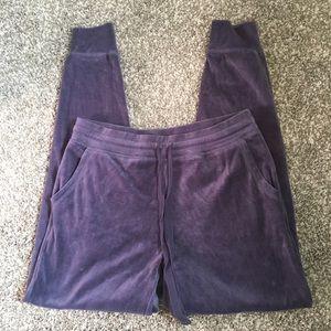 Blue velvet aerie sweatpants size small